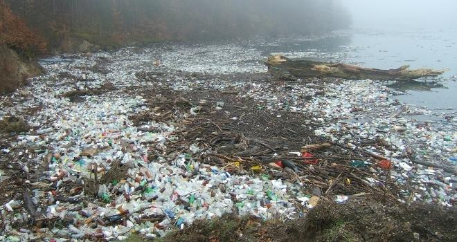 Como reduzir a poluição dos cursos d'água?