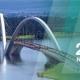 A AquaFluxus no XXI Simpósio Brasileiro de Recursos Hídricos